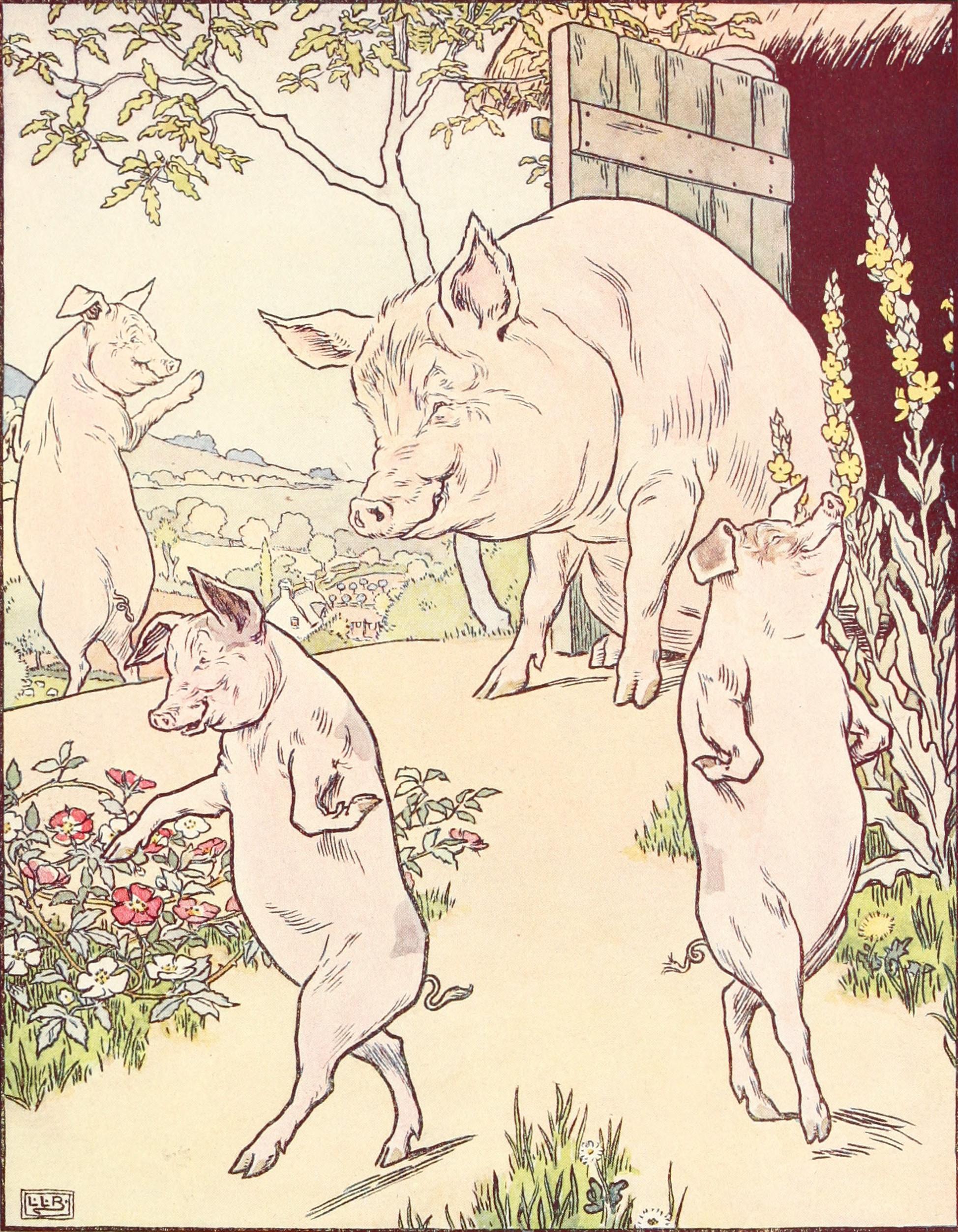 Purveyor Of Pork Pies