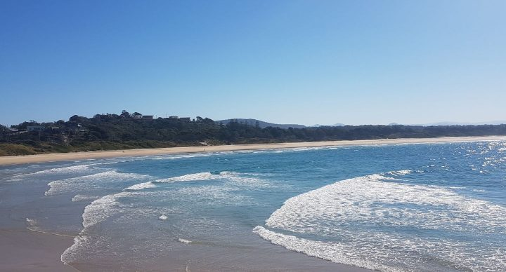 Scotts Head surf break